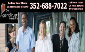 Hernando County Real Estate